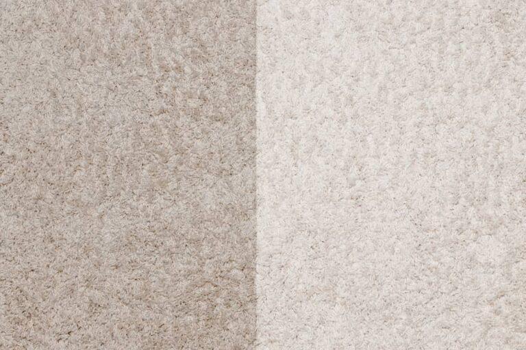 Dirty vs Clean Carpet